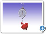 RS0103 Baby Hanging Scale Model SM-25
